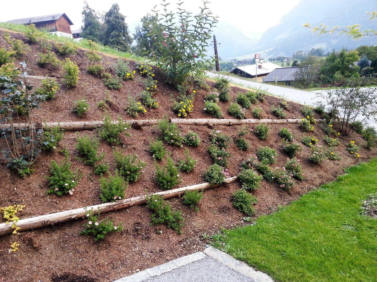 Hangbepflanzung Mit Steinen Bilder Gartengestaltung Der Service G